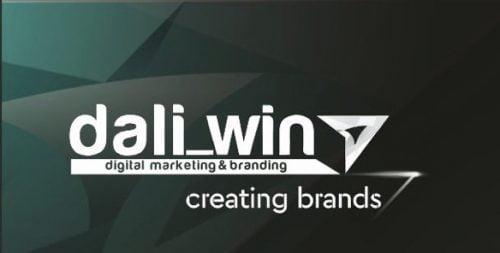 Для розвитку цифрового маркетингу та брендингу ми створили вузькоспеціалізовану нішову агенцію цифрового маркетингу (SMM) DaliWin